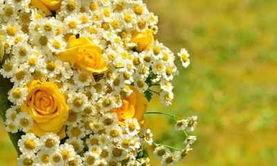 Ramo Flores Hungría, Comprar Flores Online, Floristerías en Madrid, Flores para Regalar, Floristería Online, Floristas Profesionales, Envío de Flores