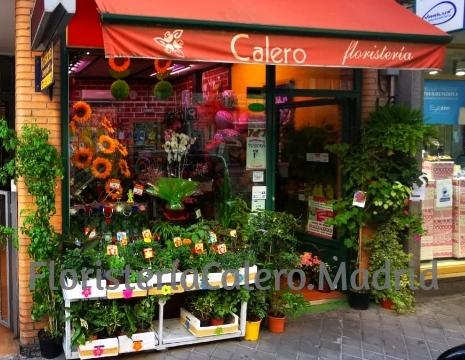 Floristería Calero en Madrid