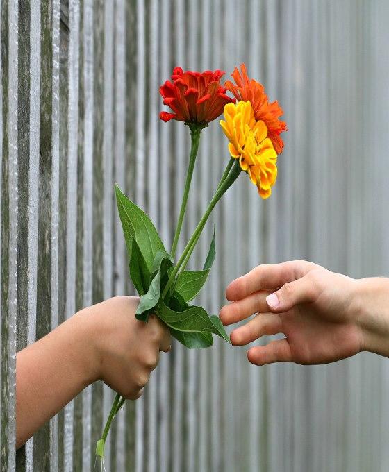 envío urgente de flores para tanatorio